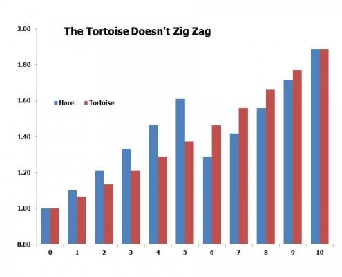 Tortoise v Hare Blog Jan 31 2016