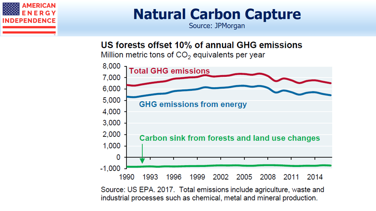 Natural Carbon Capture_U.S. Forests