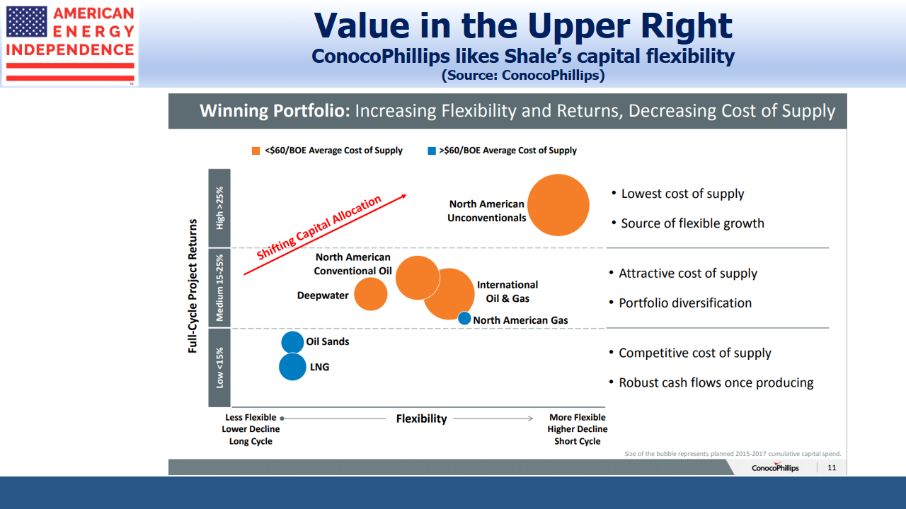 Shales Capital Flexibility
